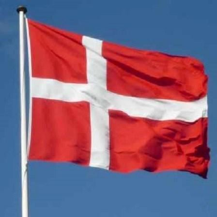 Kendte Dannebrogsflag   God kvalitet   Stilling Flag SP-29